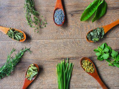 オーガニックの野菜たちが並んでいる画像