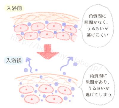 入浴によって起こる過乾燥のイメージ