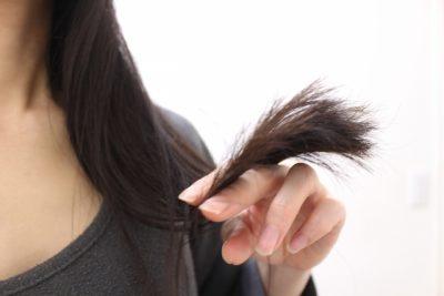 乾燥してぱさついた髪の毛
