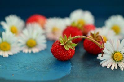 いちごと花が並んでいる画像