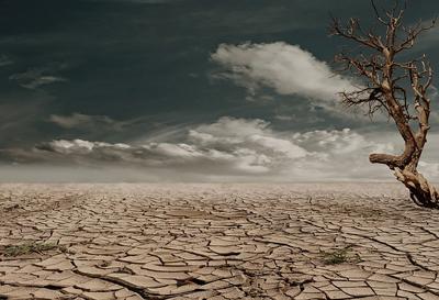 乾燥している大地