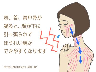 頭、首、肩甲骨が凝ると、顔が下に引っ張られる