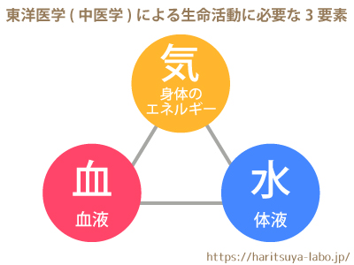 東洋医学(中医学)による生命活動に必要な3要素