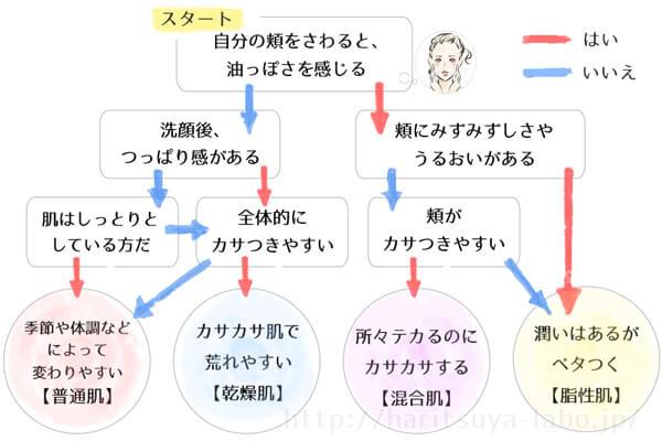 簡易版の肌診断チャート
