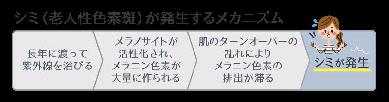 シミ(老人性色素斑)が発生するメカニズム