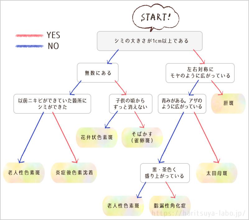 シミ種類のセルフチェックチャート(新)