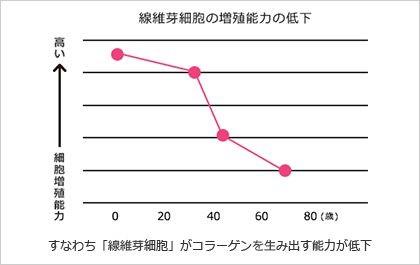 線維芽細胞の増殖能力の低下に関するグラフ