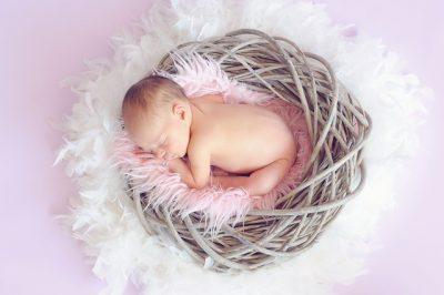 かごの中の赤ちゃん