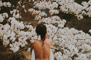 女性の背中と桜
