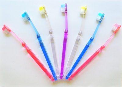 歯ブラシが7本並んでいる